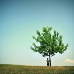 A boy and a tree….